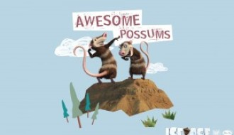 Crash and Eddie: Awesome possums – Ice Age